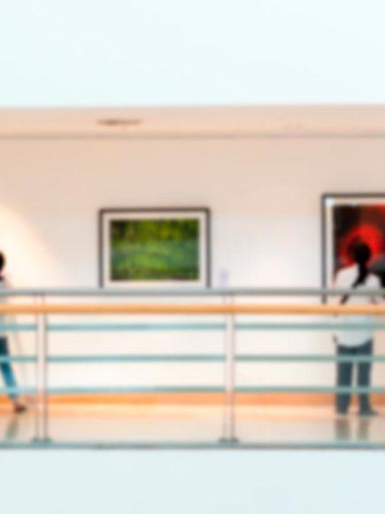 Especialista en Seguridad Privada en Museos